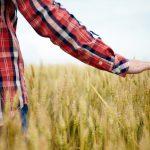 Diploma maturità in Servizi per l'Agricoltura e lo Sviluppo Rurale